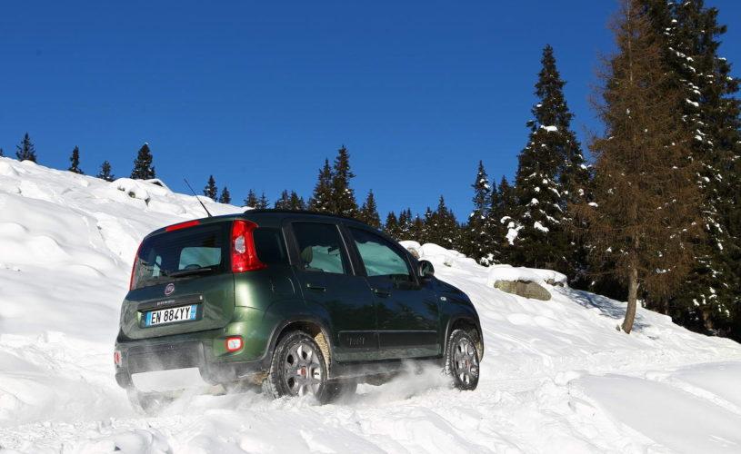 1° winter Panda 4X4